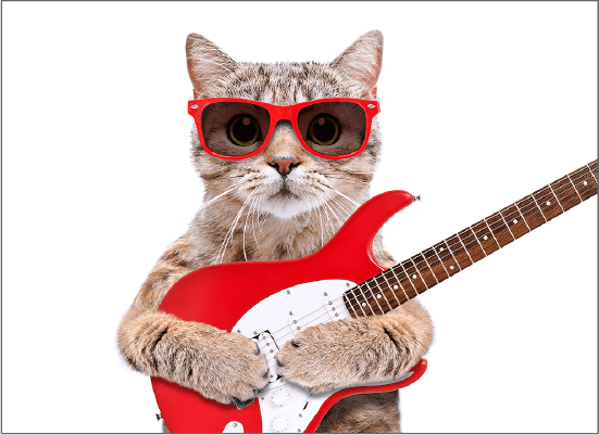 thumb-cat